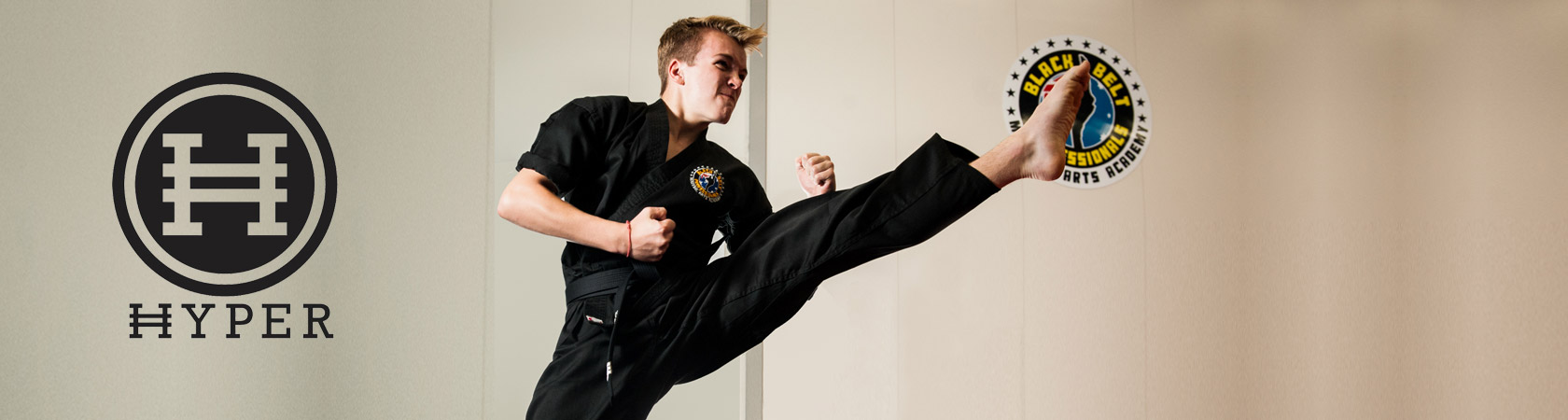 Black Belt Professionals Martial Arts