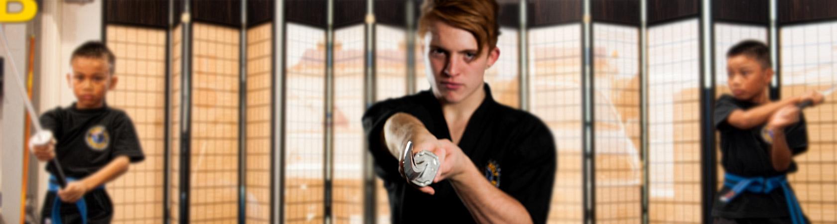 Black Belt Professionals Martial Arts